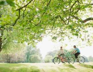 man and woman ride bikes through a woodland