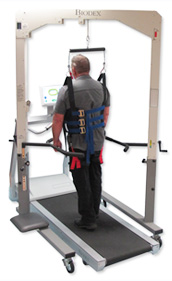 Gait Training System