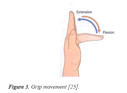 biomedres-Grip-movement