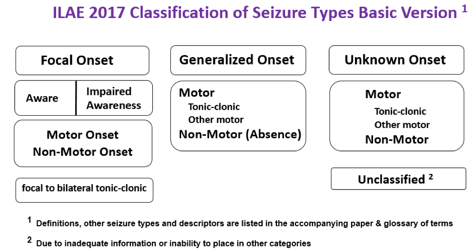 ILAE 2017 classification of seizure types basic version