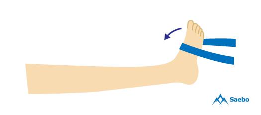 4-ankle-dorsiflexion