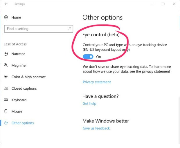 """Screenshot of the """"Other Options"""" screen. The """"eye control (beta) option is set to """"On""""."""