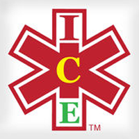 ICE Medical Standard logo