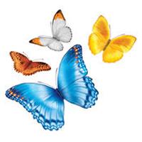 myChildrens logo
