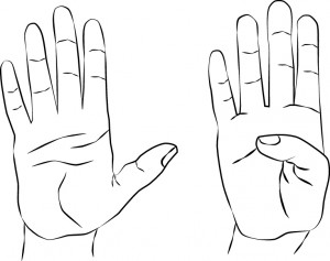hand therapy exercises thumb extension flexion